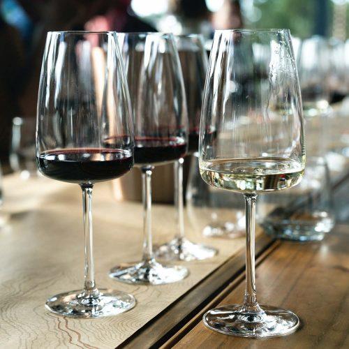 Italian Wine Tour