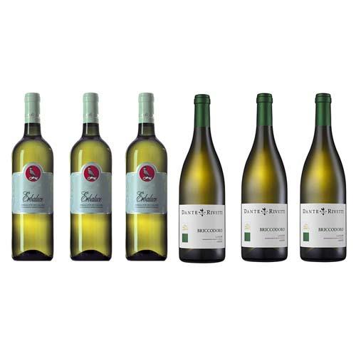 Piedmont Italian Wines